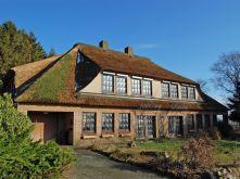 Reetdachhaus in Dörpling