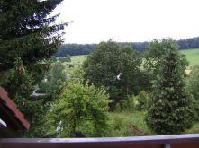 Dachgeschosswohnung in Wald-Michelbach  - Wald-Michelbach