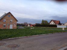 Wohngrundstück in Niederlauterbach