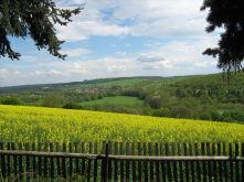 Bungalow in Mansfeld  - Vatterode
