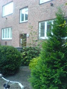 Etagenwohnung in Hamburg  - Barmbek-Süd