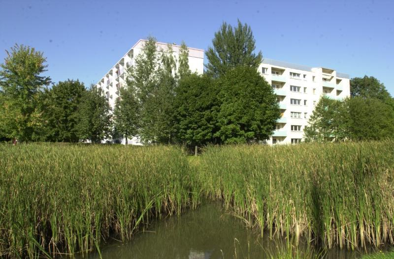 3 Raum Wohnung Helbersdorf - Wohnung mieten - Bild 1