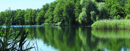 Freizeitgrundstück in Heidesee  - Dolgenbrodt