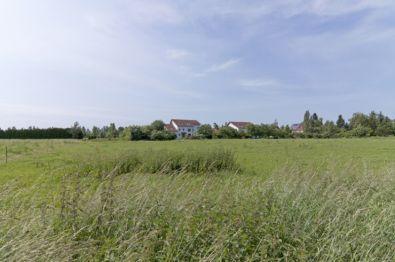 Wohngrundstück in Markkleeberg  - Markkleeberg