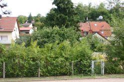 Wohngrundstück in Meckesheim  - Meckesheim