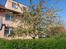 Mehrfamilienhaus in Kernen  - Rommelshausen