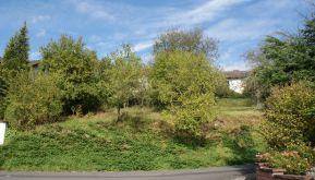 Wohngrundstück in Obernburg  - Eisenbach