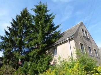 Einfamilienhaus in Ebersbach  - Ebersbach