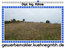 Freizeitgrundstück in Werder  - Werder (Havel)