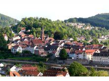 Wohngrundstück in Neckargemünd  - Dilsberg