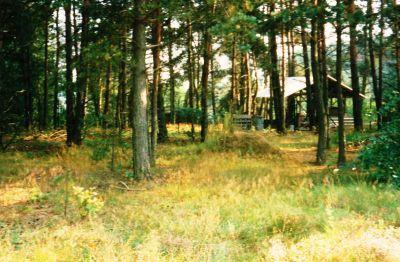 Wohngrundstück in Wandlitz  - Prenden