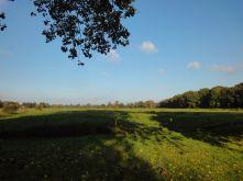 Wohngrundstück in Varel  - Rallenbüschen