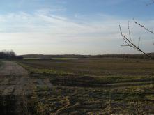 Land- und Forstwirtschaft in Lichtenau  - Merzdorf