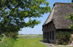 Bauernhaus in Hattstedtermarsch