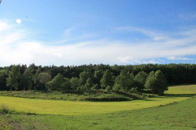 Land- und Forstwirtschaft in Pausa  - Linda