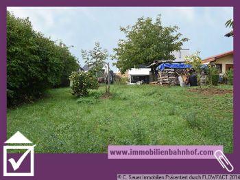 Wohngrundstück in Dielheim  - Dielheim