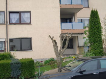 Erdgeschosswohnung in Raubling  - Raubling