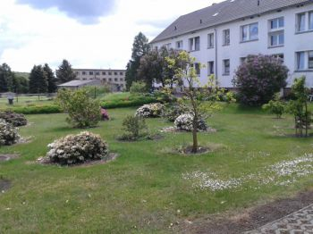 Wohnung in Schwanefeld