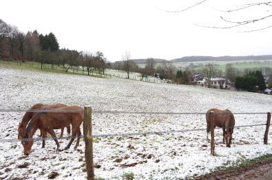 Bauernhof in Morsbach  - Überasbach