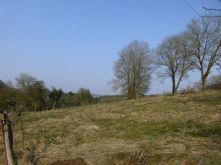 Wohngrundstück in Kall  - Rinnen