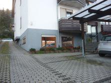 Souterrainwohnung in Sinsheim  - Waldangelloch