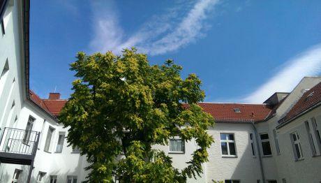 Maisonette in Berlin  - Charlottenburg