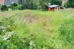 Wohngrundstück in Bleckede  - Bleckede