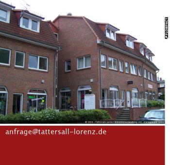 Dachgeschosswohnung in Feldberger Seenlandschaft  - Feldberg