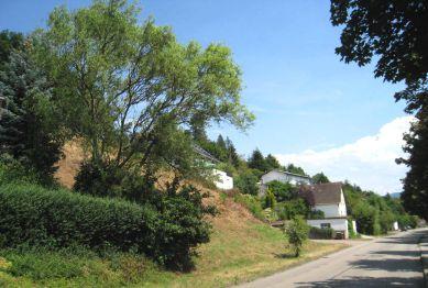 Wohngrundstück in Gaggenau  - Selbach
