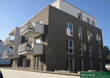 Erdgeschosswohnung in Frankfurt am Main  - Eckenheim