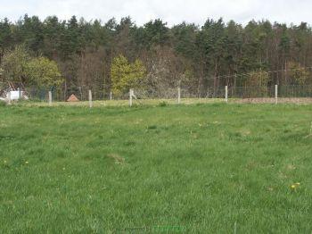 Wohngrundstück in Glasewitz  - Glasewitz