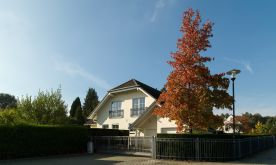 Sonstiges Haus in Bad Homburg  - Dornholzhausen