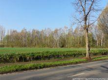 Wohngrundstück in Recklinghausen  - Suderwich