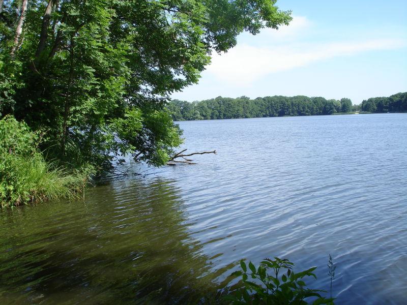 Erholungsgrundst�ck Siethener See B 12 - Grundst�ck mieten - Bild 1