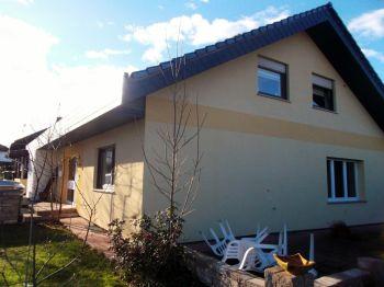 Erdgeschosswohnung in Kirchheimbolanden  - Kirchheimbolanden