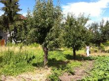 Wohngrundstück in Wusterhausen