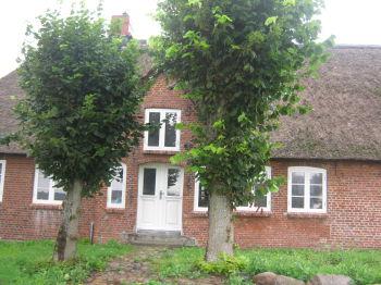 Reetdachhaus in Husum  - Husum