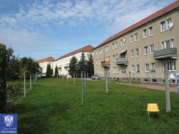 Erdgeschosswohnung in Döbeln  - Döbeln