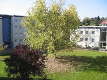Etagenwohnung in Kempten  - Lotterberg