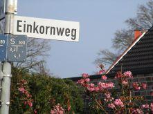 Wohngrundstück in Münster  - Amelsbüren