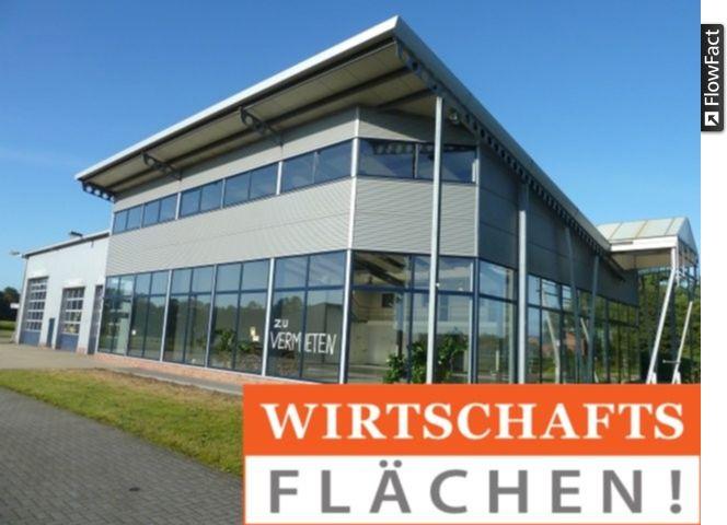 Hochmoderne technisch hervorragend ausgestattete Ausstellungshalle gro�er Freifl�che - Gewerbeimmobilie mieten - Bild 1