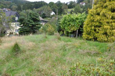 Wohngrundstück in Siegen  - Gosenbach