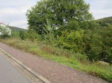 Wohngrundstück in Elsenfeld  - Schippach