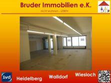 Praxis in Neckargemünd  - Dilsberg