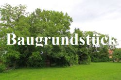 Wohngrundstück in Beinheim