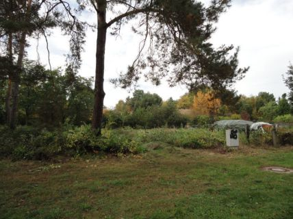 IMMOBERLIN: Großes Grundstück (2 Flurstücke) in naturnahem...
