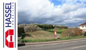 Wohngrundstück in Mechernich  - Roggendorf