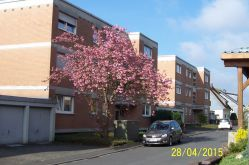 Etagenwohnung in Neunkirchen  - Zeppenfeld