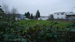 Wohngrundstück in Hagenbach