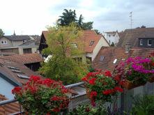 Wohnung in Bischofsheim